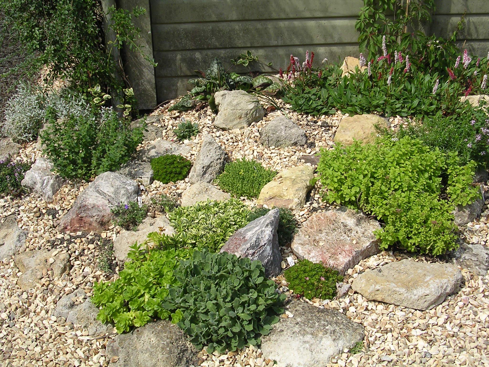 Alison S Gardens Seaside Garden